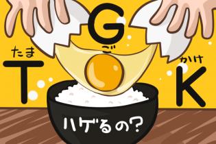 TGK(卵かけご飯)ってハゲるの?