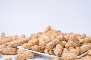 鶏肉とピーナッツは本当に薄毛対策に役に立つのか?